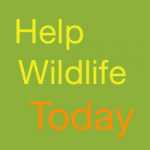 Help-Wildlife-Today