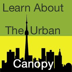 learnabouttheurbancanopy